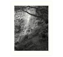 Goathland Mallyan Spout Waterfall B&W Art Print
