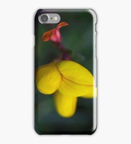 Birdsfoot Trefoil iPhone Case/Skin
