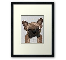 Brown Frenchie Puppy 001 Framed Print
