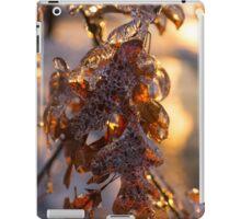 Ice Storm 2013 - Oak Leaves Jewelry iPad Case/Skin