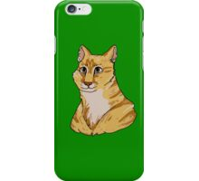 Pet Portrait - Pounce 1 iPhone Case/Skin