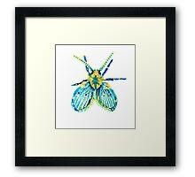 Drain Fly Framed Print