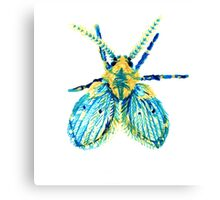 Drain Fly Canvas Print