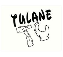 Mickey Mouse Hands Tulane Art Print
