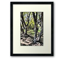 Urban Grove Framed Print