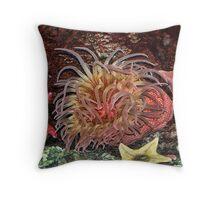 Starfish Pillow Throw Pillow