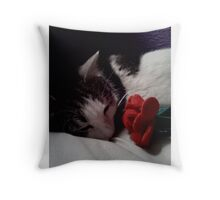 Snuggle Muffin With a Rose Throw Pillow