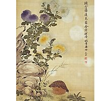 Ma Yuanyu - Chrysanthemums And Quail. Still life with flowers: flowers, blossom, Quail, Chrysanthemums, floral flora, wonderful flower, plants, cute plant for kitchen interior, garden,  Bird Photographic Print
