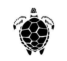 Black Sea Tortoise Shell Photographic Print