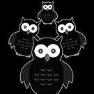 The Black & White Owl (2) by Adamzworld