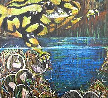 Australian  Corroboree Frog from a Pastel Painting by Heather Holland by Heatherian