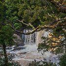 Knyvet Falls 4 by Werner Padarin