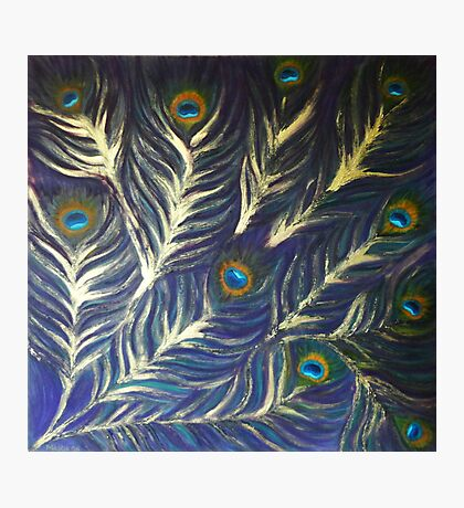 Peacock feathers Photographic Print