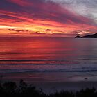 Our little patch of Paradise - Adventure Bay sunrise, Bruny Island, Tasmania by PC1134
