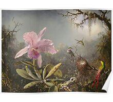 Martin Johnson Heade - Cattleya Orchid And Three Hummingbirds. Lake landscape: trees, river, land, forest, marine coast seaside, waves and beach, lagoon reflection, sun clouds, nautical panorama, lake Poster