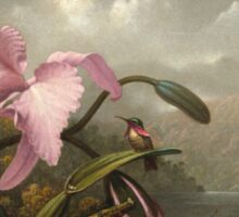 Martin Johnson Heade - Orchid And Hummingbird. Garden landscape: garden view, trees and flowers, blossom,  lotus blossom, botanical park, orchid, wonderful sky, passion flowers, magnolias, hummingbird Sticker