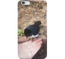 Mrs Carter's Wagtail - 30 05 2016 iPhone Case/Skin