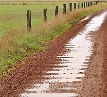 Corrugations After The Rain by metriognome