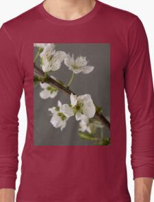 beautiful spring  flower Long Sleeve T-Shirt