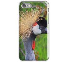 Tame a Wild Bride iPhone Case/Skin