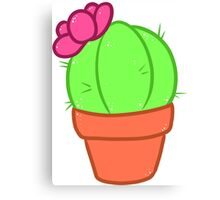 Ball Cactus Canvas Print