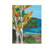 Birch Tree Beach Art Print