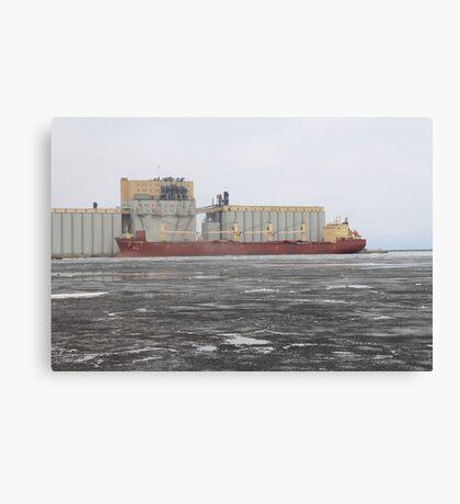 Federal Danube Canvas Print