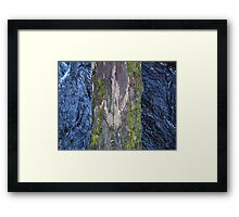 Log Bridge Framed Print
