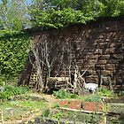 Brunswick Community Garden, Harsimus Branch Embankment, Jersey City by lenspiro
