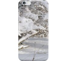 Mother Nature Wears a Bridal Gown... iPhone Case/Skin