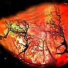 On Fire by Igor Zenin