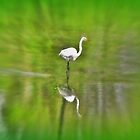 Egret Impressionism ! by Nancy Richard