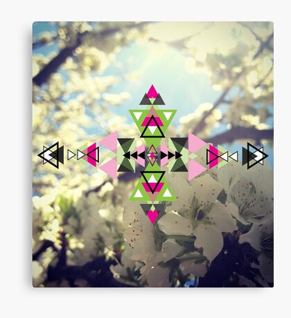 Spring Abstraction Canvas Print