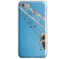 birds and crane iPhone Case/Skin