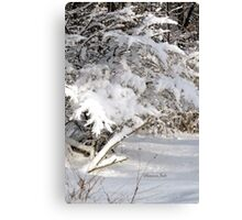 Mother Nature Wears a Bridal Gown... Canvas Print