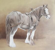 Traditional Cob by Pauline Sharp