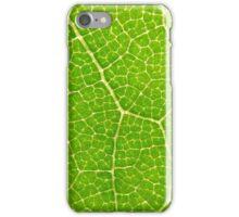 Leaf Macro [ iphone / case / wallet ] iPhone Case/Skin