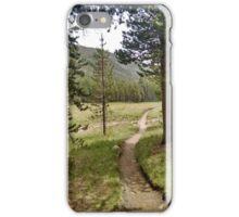 Trail iPhone Case/Skin