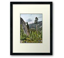 Trail 2 Framed Print