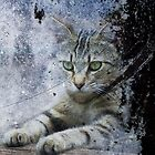 The Painter's Cat by Clare Colins