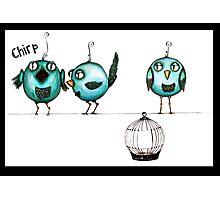 Feeling chirpy Photographic Print