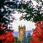 Government House Clock Tower by Brett Rogers