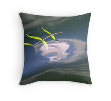 Floating on the river Throw Pillow