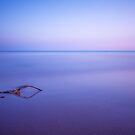 Quietude by fernblacker
