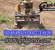 Tree Doctor Indianapolis- Emergency Tree Removal- Tree Pruning by Hugh Jackman