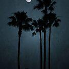 Coastal Moon by RichCaspian