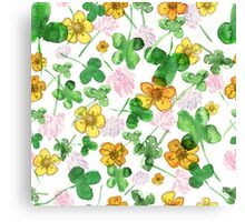 Green history clover Canvas Print