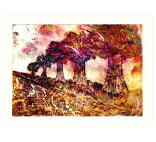 Nature Etch Art Print