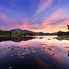 Aplins Weir by Stephen  Nicholson