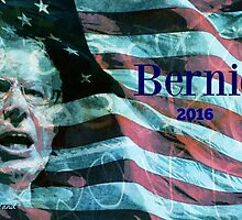 Bernie 2016 by Rita  H. Ireland